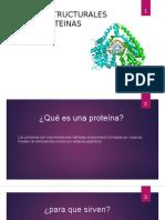 Niveles Estructurales de Las Proteinas
