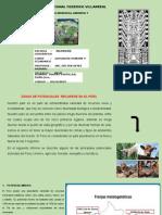 PPT INFORME ZONAL DE POTENCIAL DEL PERU