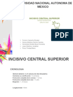 Incisivo Central Sup Odontopediatria