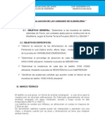 Informe albañileria estructural