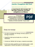 Borrego Cimarrón en México%2c Modelo Para La Taruca.
