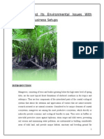 Mangroves Project