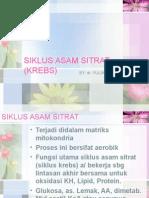 Siklus Asam Sitrat (Krebs)