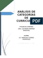 ANÁLISIS DE CATEGORÍAS DE CURRICULUM