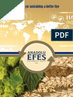 Anadolu Efes Sustainability Report 2013