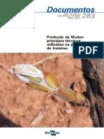 Producao de Mudas Principais Tecnicas Utilizadas Na Propagacao de Fruteiras