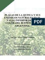 INTA Manual Plagas de La Quinua y Sus Enemigos Naturales en El Valle Inferior Del Rio Colorado Buenos Aires Argentina 2015