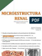 Microestructura Renal Seminario Patología
