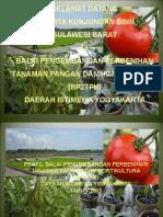Profil Bp2tph 2015