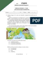 Ficha diagnostica ciencias naturais