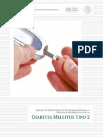 10_2012_Manual_DM2_vFinal_31oct12.pdf