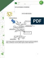 Articles-19390 Recurso Pauta PDF