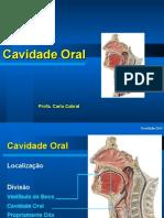 Aula Cavidade Oral