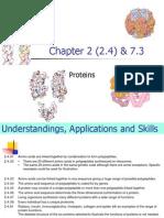2 4-7 3 proteins-hl-mk