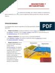 expo geologia figueroa.docx