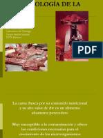 03 Microbiología de La Carne