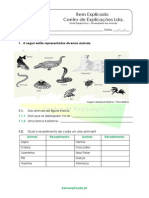 1 Diversidade Dos Animais Teste Diagnóstico 1