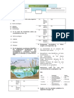 examen 1ro, ecosistemas