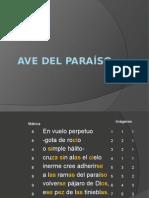 Ave Del Paraíso [Trava]