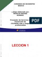 Sistema Comando de Incidentes-Arp Colmena