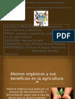 Abonos-orgánicos.pptx