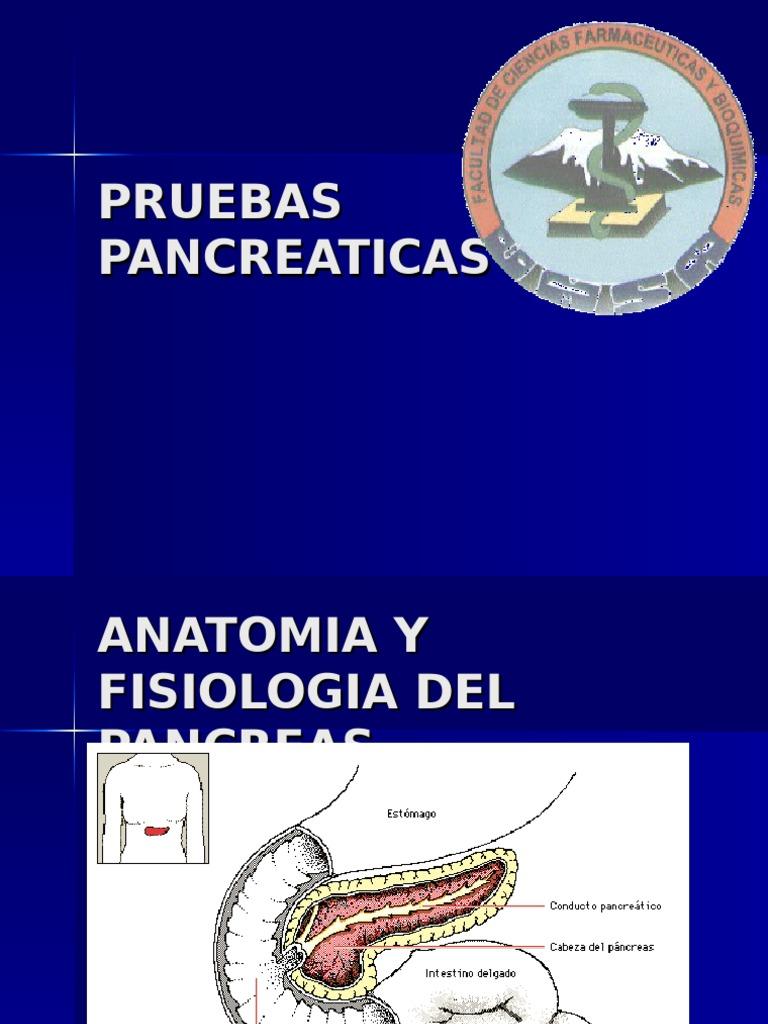 PRUEBAS PANCREATICAS (2)