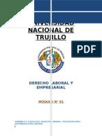 Modulo 01 Dinamica y Logistica Del Derecho Tercerizacion e Intermediacion Laboral