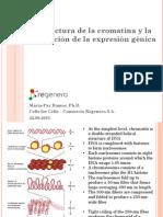 BIO288C_Epigenetica_2015