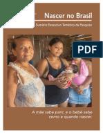 Inquérito Nacional Sobre Parto e Nascimento - Nascer No Brasil
