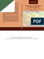 monografie_sava-final.pdf