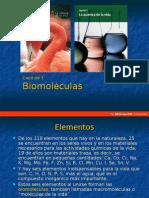 las biomoleculas y su estructura funcional