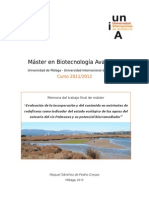 Evaluación de la incorporación y del contenido en nutrientes de rodofíceas como indicador del estado ecológico de las aguas del estuario del río Palmones y su potencial biorremediador