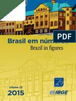 BrasilEmNumeros-bn 2015 v23