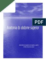 Anatomia Do Abdomem Superior