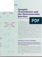 Neuromuscular Junction &Synapses