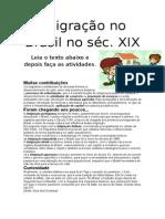 Imigração No Brasil No Séc XIX