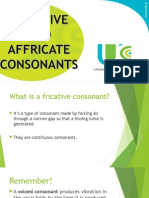 Fricative and Affricate Consonants
