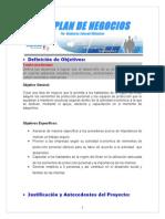 PLAN_DE_NEGOCIOS LUISA CAMPOS - copia.doc