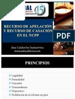 Diplomado NSPP Recurso de Apelacion y Casacion