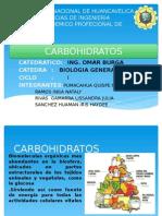 Carbohidratos b