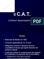 Cat test introduzione slide