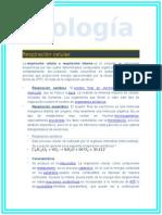 PARCELADOR BIOLOGIA