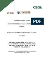 3. Proyecto Region Tolima (1)