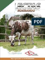 SELECTAS+Normando+-+Julio+2014