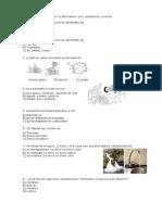 Evaluación Intermedia Cs. Naturales PME2° Básico.docx
