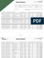 expense_report_2011.pdf