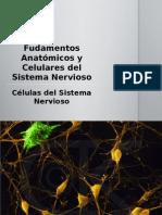 Unidad I. Células del Sistema Nervioso