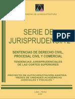 jurisprudencia amag