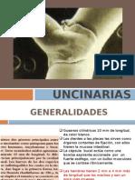 Uncinarias