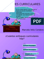 enfoque curriculares.pptx